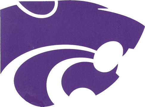 Angleton High School Wildcat Logo