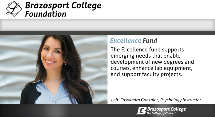 Excellence Fund